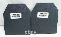 Armored Republic Ar500 Testudo Gen 2 Porte-plaques Avec Plaques De Niveau III